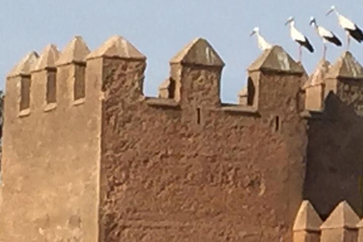 Turm in Rabat