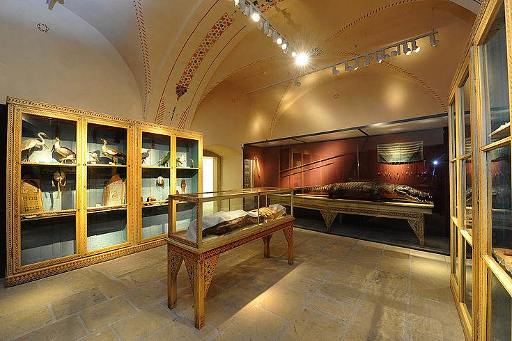 Blick in den Ausstellungssaal