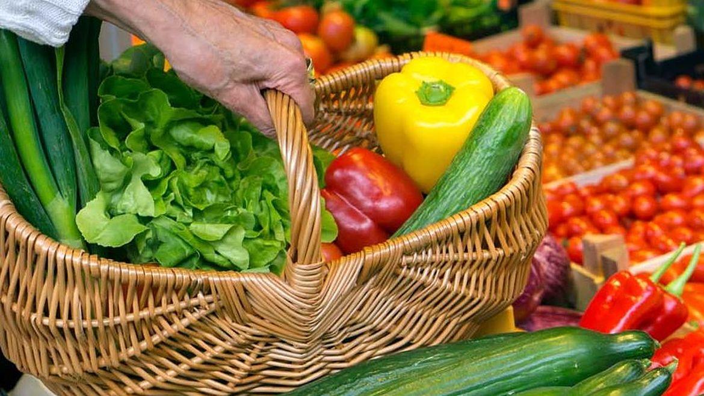 Ein Nadelwald und ein Einkaufskorb mit frischem Gemüse