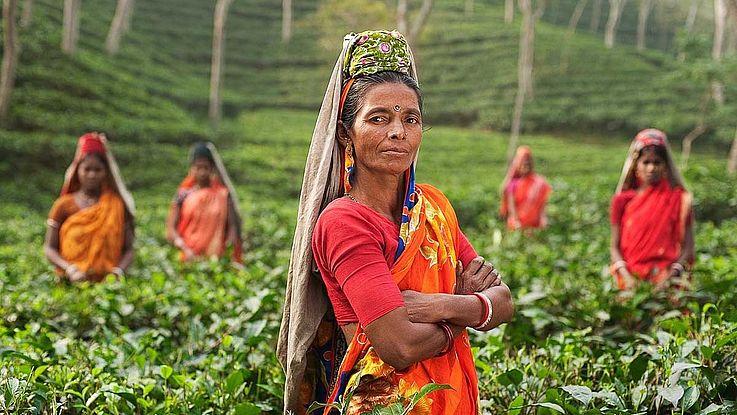 Eine stolze indische Frau mittleren Alters steht, die Arme selbstbewusst verschränkt in einer Teeplantage. Im Hintergrund sammeln andere Frauen die Blätter.