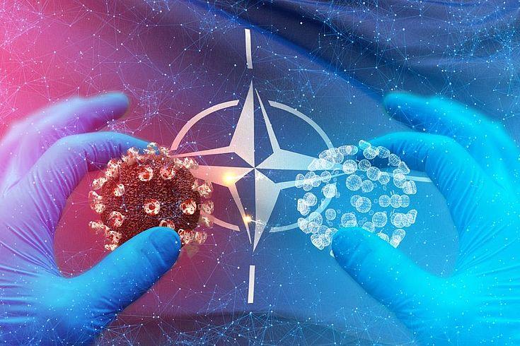 Themenbild: zwei behandschute Hände halten je ein überlebensgroßes Coronavirus (kleiner Ball mit Noppen) vor das NATO-Symbol (ein vierstrahliger Stern in einem Kreis).