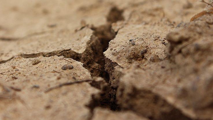 Riss im Erdboden, der aussieht als würde er sich weiter öffnen.