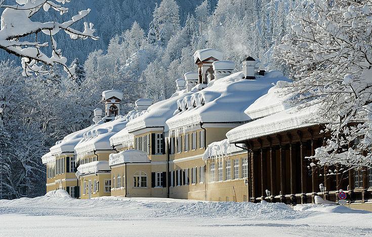 verschneites Anwesen zwischen verschneiten Bäumen