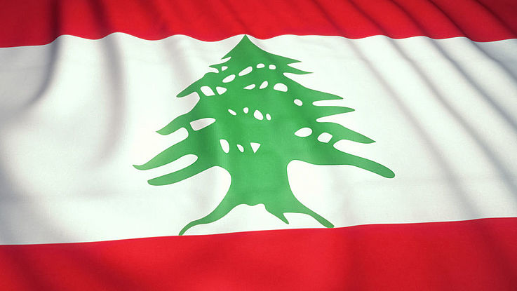 Bild eines Zendernbaumes. Flagge des Libanon.