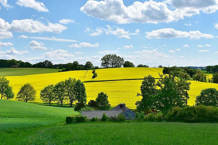 Was gehört zum Selbstverständnis der Bauern? Was ist die Rolle der Landwirtschaft?