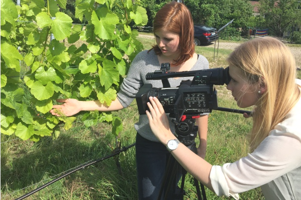 Stipendiatinnen filmen in einem Bamberger Weinberg