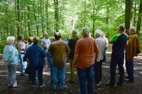 Exkursion mit dem Förster im Banzer Wald